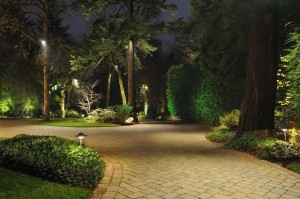 landscape lighting paths